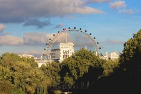 london-trees